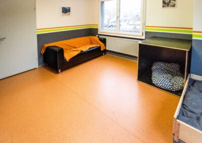 Anihome   Professionelle Hundepension Bedienung
